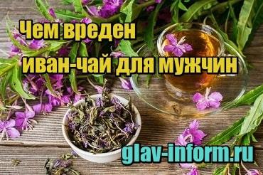изображение Чем вреден иван-чай для мужчин