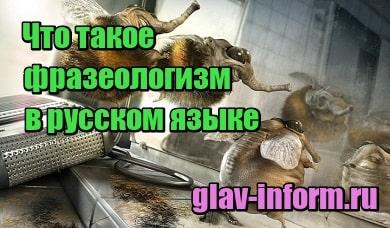 миниатюра Что такое фразеологизм в русском языке простыми словами, примеры