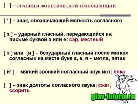 картинка транскрипция
